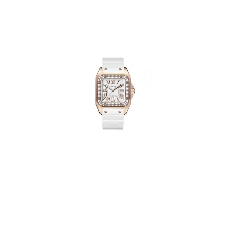 Cartier Santos 100 Unisex Watch WM50450M 55218 1